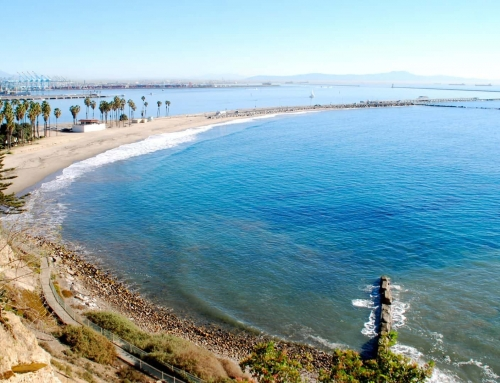 Top 10 Most Expensive and Unique Homes in San Pedro